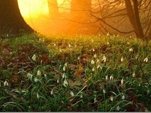 Открытие Сварги — закликание Весны