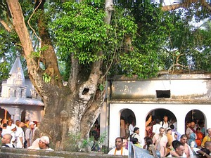 Sri Saranga Thakura (Disappearance)