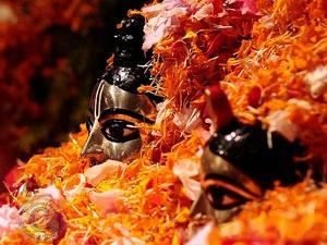 Shri Krishna Pushya Abhisheka