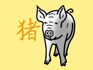 Свинья (кабан, слон): китайский (восточный) гороскоп