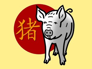 Pig (fire): chinese (eastern) horoscope