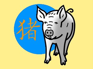 Pig (water): chinese (eastern) horoscope