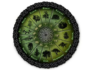 Celtic tree (druids') lunar horoscope