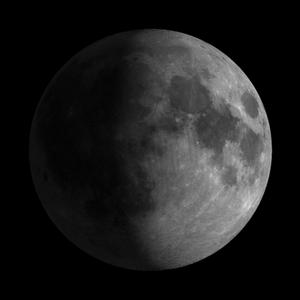 10 lunar day