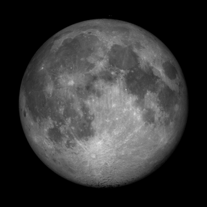 16 lunar day