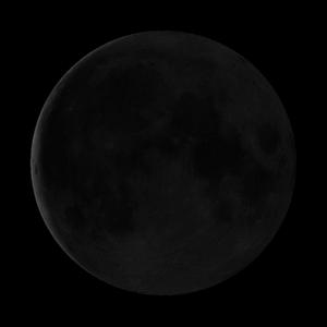 29 lunar day