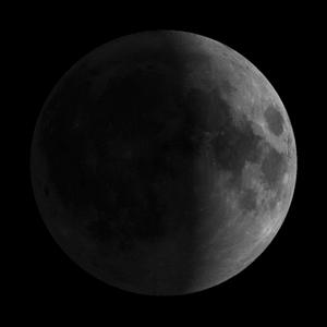 7 lunar day