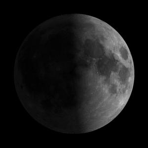 8 lunar day