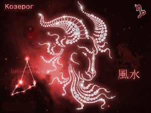 Capricorn: zodiac horoscope (lunar)