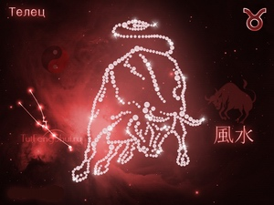 Taurus: zodiac horoscope (solar)
